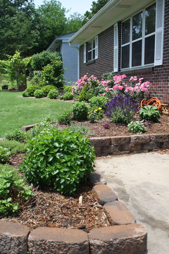 DIY Spring Landscaping | Rosemary on the TV #flowerbed #gardening #landscaping #DIY #herbs #herb #garden