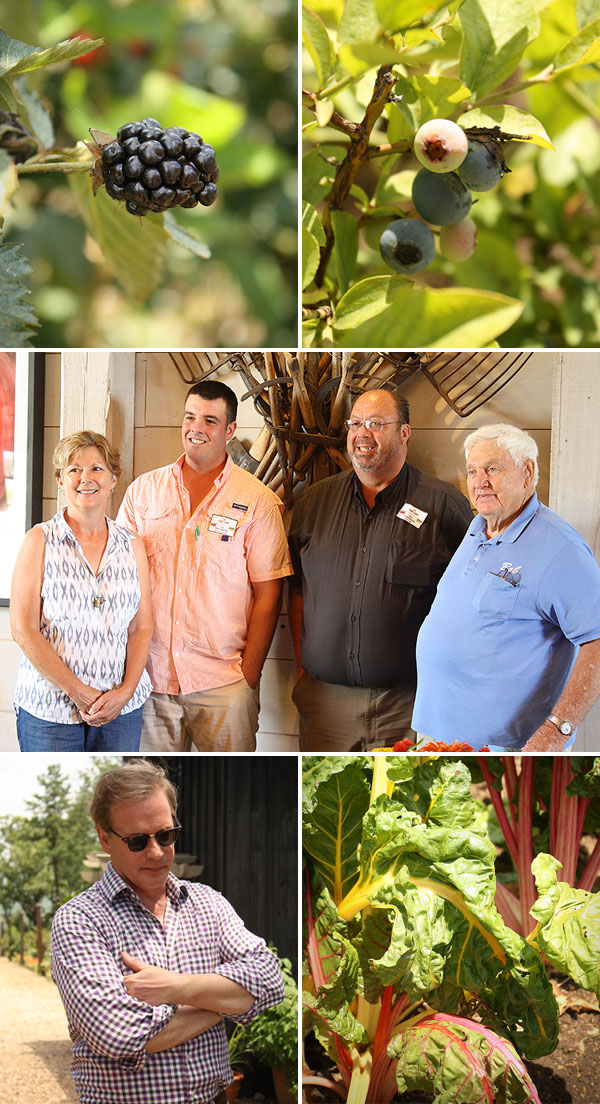 Farm2Home 2014 at P. Allen Smith's Moss Mountain Farm | Rosemary on the TV #arkansas #eatlocal #farm