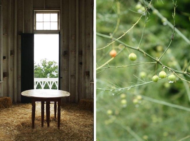P. Allen Smith's Garden Home and #AR529 | Rosemary on the TV  #interiordesign #landscaping #gardens #chickens #mossmountainfarm