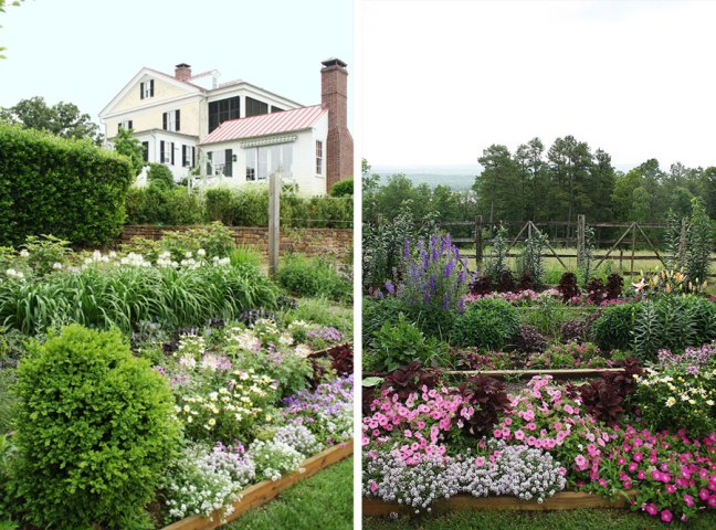 P. Allen Smith's Garden Home and #AR529 | Rosemary on the TV  #interiordesign #landscaping #gardens #chickens #mossmountainfarm